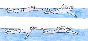 Comment apprendre nager le crawl for Piscine pour apprendre a nager